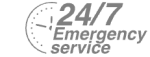 24/7 Emergency Service Pest Control in Northwood, Moor Park, HA6. Call Now! 020 8166 9746